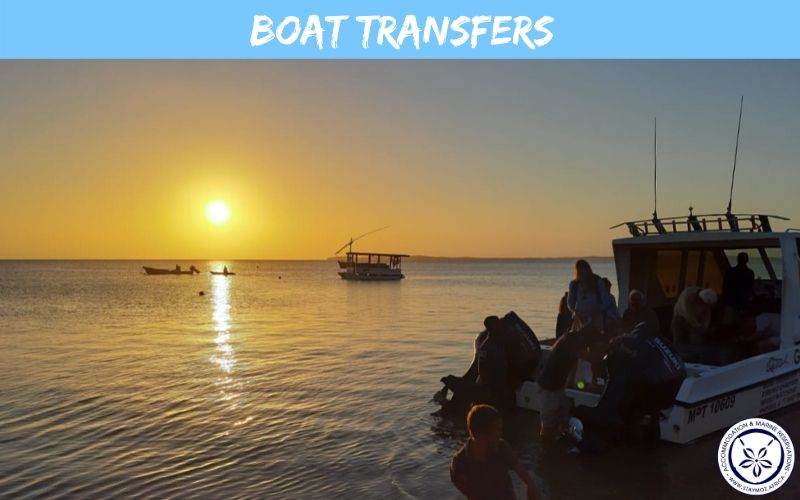Boat Transfers Stay Moz Book Accommodation And Activities In Mozambique