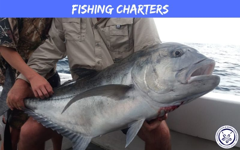 Ponta Fishing Charters Stay Moz Book Accommodation And Activities In Mozambique