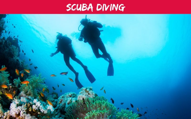 Scuba Diving Stay Moz