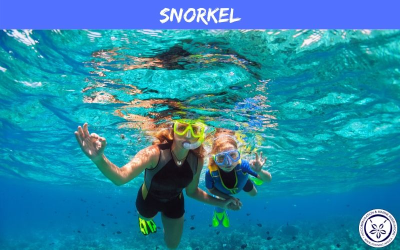 Snorkel Stay Moz Book Accommodation And Activities In Mozambique